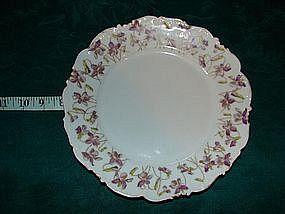 Tressemann & Vogt china salad plates