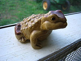 Toad Frog Shaker