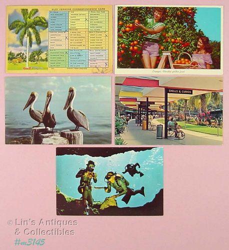 FIVE FLORIDA SOUVENIR POSTCARDS