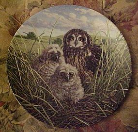 Knowles Happy Home Short-eared owls 8th plate