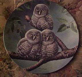 Knowles Out on a limb Great Gray Owls 5th issue